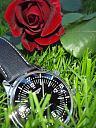 LONGINES LEGEND DIVER  no date-p5081515.jpg