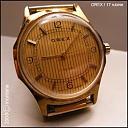 Rumunski satovi-orex_galben_17j_m1.jpg