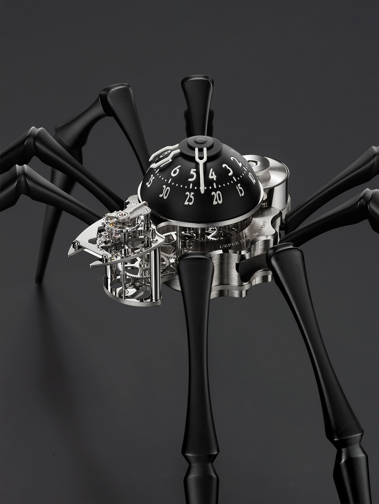 Naziv: Arachnophobia-Black-CloseUp_Lres.jpg, pregleda: 124, veličina: 322,0 KB
