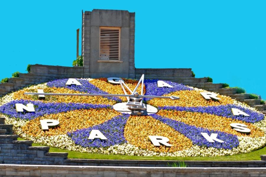 Naziv: cvjetni sat.jpg, pregleda: 511, veličina: 189,1 KB