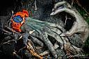 Slike satova koji mi se sviđaju-g-shock-zombie-1.jpg