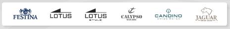 Naziv: Festina Group Brands.jpg, pregleda: 147, veličina: 23,6 KB